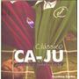 Clássico Ca - Ju - Caxias X Juventude - Futebol Gaucho