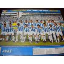 Poster Avai Campeão Catarinense 2009 21x27 Cm Placar