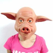 Máscara Cabeça Porco Látex - Pronta Entrega - Melhor Preço