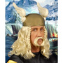Viking Costume - Homens Loiro Guerreiro Fancy Dress Plait Pe