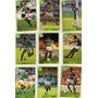 Cards Do Album De Figurinhas Palmeiras 1994 - Multi Editora
