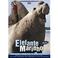 Dvd, Elefante Marinho ( Raro) - Imagens Inéditas, Dublado