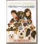 Dvd - Um Hotel Bom Pra Cachorro - Lacrado