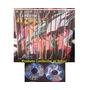 Cavaleiros Do Zodiaco Completo Todas Sagas Dvd + Brindes!