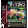 Dvd - A Vida Privada Das Plantas (2 Dvd