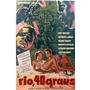 Dvd Filme Nacional - Rio 40 Graus (1955)