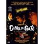 Dvd Cama De Gato Caio Blat Cine Nacional Raridade