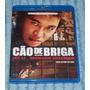 Blu-ray Cão De Briga