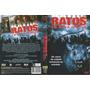 Dvd - Ratos Em Nova Iorque - Elisa Moolecherry, Madchen Amic