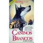Vhs - Caninos Brancos - Klaus Maria Brandauer