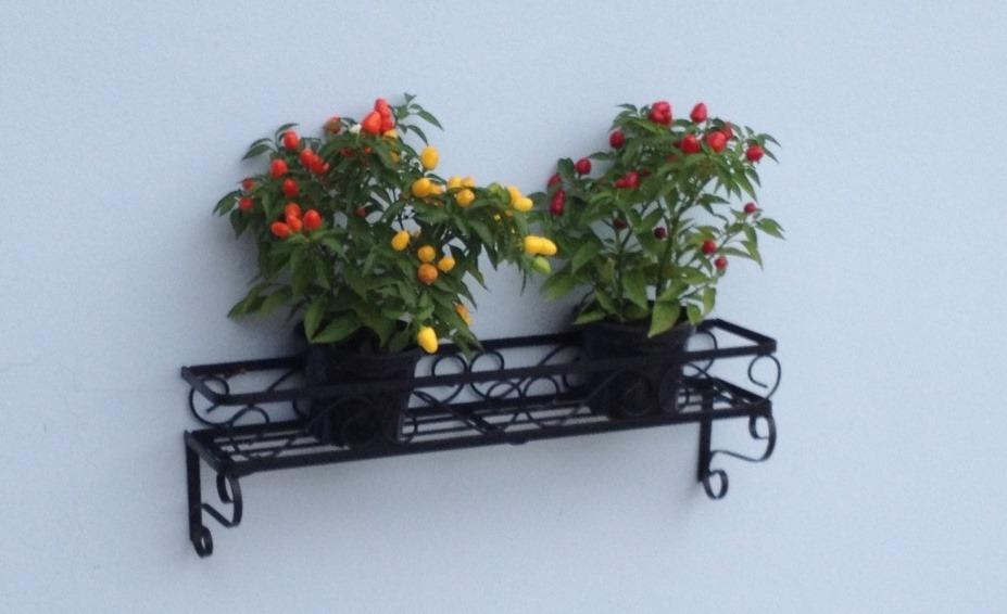 Enfeite De Jardin ~ Floreira De Parede Pra Enfeite De Jardim R$ 75,00 no MercadoLivre