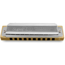 Gaita Boca Profissional Diatônica Hering 8020 Super 20 Dó
