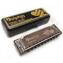 Gaita De Boca Dolphin Pocket Blues 20 Vozes