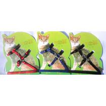 Coleira Peitoral Com Guia Para Gatos - Preta - Frete 9,60