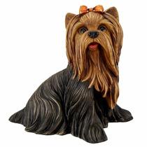 Cachorrinha Yorkshire - Estatueta Em Gesso - Cachorro