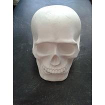 Crânio De Gesso Liso Branco