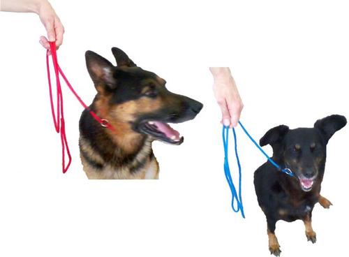 Guia Longa Corda Treinamento Passeio Cães De 2 Até 100 Mts