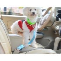 Cinto Segurança Cachorro E Gatos Com Fivela Cães Carro