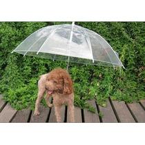 Protetor Contra Chuva Para Coleira Cão Transparente Import