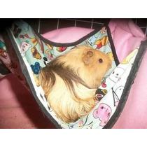 Cama Rede Para Roedores Chinchila Hamster Porquinho Fêmea