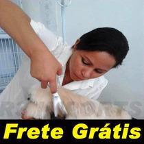 Tesoura Profissional Banho E Tosa Frete Grátis Brasil