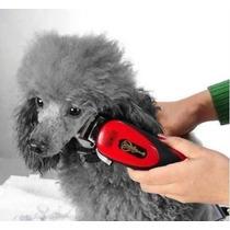Kit Maquina De Tosa Pet Aparadora Profissional Para Cachorro
