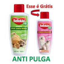 Shampoo Erva De Sta. Maria Anti Pulgas + Condicionado Grátis