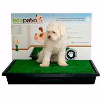Ecopatio Pet Sanitário Canino De Grama Sintética