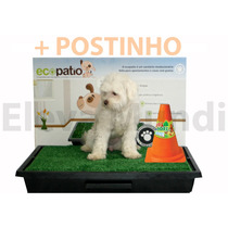 Sanitario P/ Cães Grama Ecopatio Pet Park + Postinho Macho