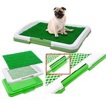 Sanitario Cachorro Bandeja Pipi Dog Canino Tapete Higienico