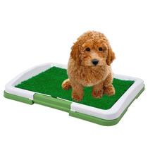 Sanitario Canino Tapete Higienico Caes Bandeja Pipi Dog Cao