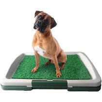 Ecopatio Sanitário Inteligente Cães Cachorro Western Pet-309