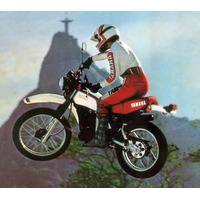 Paralama Traseiro Yamaha Dt 180 Ate 1984 - Varias Cores