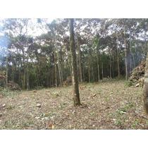 Juquitiba-lindo Terreno-plano-próximo A Cachoeira-ref:03876