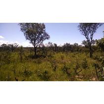 Fazenda Tocantins- 145 Hct Plana, Cercada, Particular