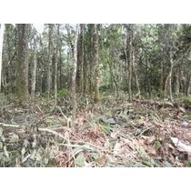 Terreno Juquitiba/oportunidade/5.000 Mts/r$50.000/ref:03617