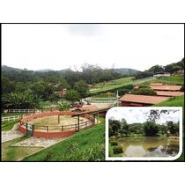 Haras 06 Alqueires Em São Roque - Estrutura Completa