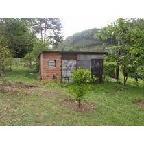 Juquitiba/sitio Plano, Pasto, Lago, Pomar, Ref; 03624