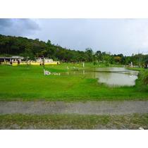 Acampamento / 75.000 M² / Piscina / Chalés / Tirolesa / Rest