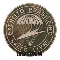 Breve Insignea Emborrachado Salto Livre Paraquedista