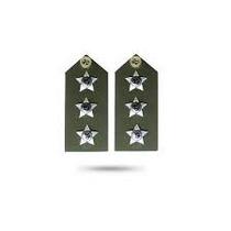 Platina De Capitão Do Exército Brasileiro - Eb - (par)