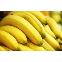Mudas De Banana Nanica Gigante + Frete Grátis