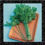 Kintsai - Aipo Chinês - Sementes Ervas Hortaliça Para Mudas