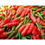 100 Sementes Da Pimenta Malagueta Frete Grátis - Ferrazmg
