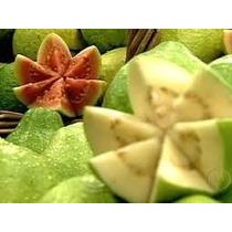 15 Sementes De Goiaba Vermelha E 15 Da Goiaba Branca Fruta