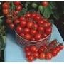 100 Sementes De Tomate Cereja Comum Caipira Frete Grátis