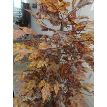 Plantas Artificial/arranjo-árvore Folha Canadense-1,60 Altur