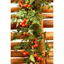 100 Sementes De Tomate Cereja, Cultive Em Vasos Frete Gratis
