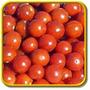 Sementes De Tomate Cereja Gigante Para Plantas