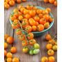 Tomate Cereja Laranja Sementes Para Mudas + Brinde